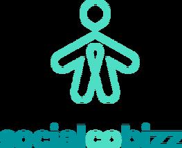 Joint-Venture Sociale (3/3) : Le point de vue académique d'Antoine Rieu, doctorant mandaté par SocialCOBizz
